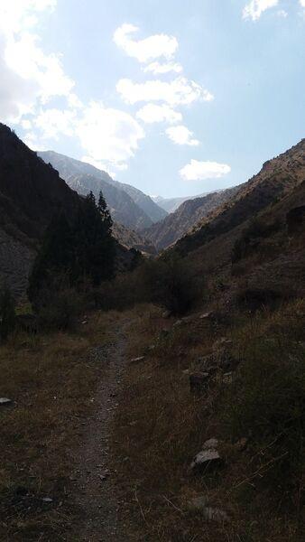 Фото мужчины Фаррух, Душанбе, Таджикистан, 22